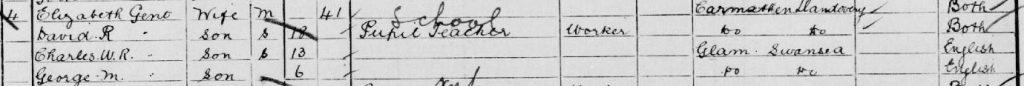darn o 1901 cyfrifiad